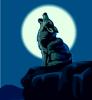 coyote09